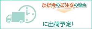 simulation_nouki
